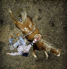 PRCA Rodeo that's going to hurt..