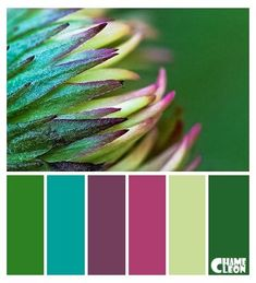 Green Paint Colors, Green Color Schemes, Kitchen Colour Schemes, Room Paint Colors, Color Combinations, Bathroom Colors, Bathroom Ideas, Bathroom Green, Kitchen Colors