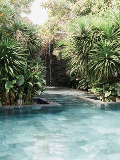 dream pool + landscape