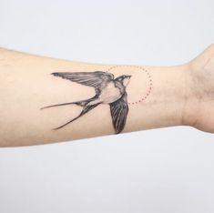 Get swallow tattoo HD Wallpaper [] asugio-wall. Barn Swallow Tattoo, Swallow Tattoo Design, Swallow Bird Tattoos, Tiny Bird Tattoos, Small Tattoos, Jj Tattoos, Wrist Tattoos, Future Tattoos, Arm Band Tattoo