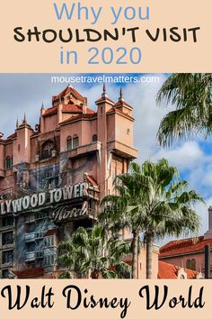 Why You Should (Or Shouldn't) Visit Disney World in 2020.