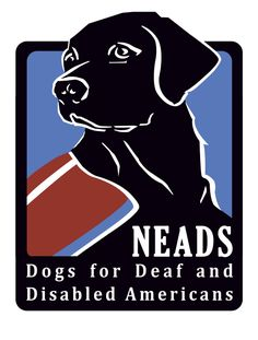 NEADS/Dogs for Deaf and Disabled Americans is a non-profit organization that provides canine assistance for people who are deaf or have a disability. Summer Safety Tips, Spring Allergies, Dog Whisperer, Guide Dog, Therapy Dogs, Service Dogs, Train Service, Training Your Dog, Training Tips