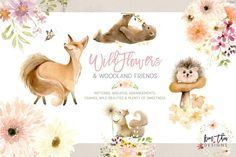 Wildflowers and Woodland Friends by Kim Thoa Designs on @creativemarket