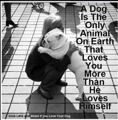 Something to be said for unconditional love. I love my dogs!