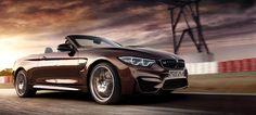 BMW M4 Cabrio 2017 Bilder | Hintergrundbilder - Wallpaper