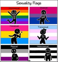 nocturnecreature: LGBT / Different sexual orientations but one thing for sure…we are all humans! I always forget the color of the flags. Lgbtq Flags, Lgbt Memes, Pansexual Pride, Gay Aesthetic, Lgbt Community, Stargate, Gay Pride, Pride Flag, Troll
