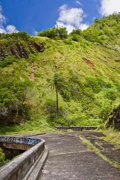 old pali road-4