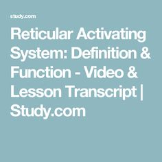 Reticular Activating System: Definition & Function - Video & Lesson Transcript | Study.com