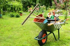 Get quality lawn mowing and garden maintenance services over the Athelstone region at a sensible price from the Fox Mowing and Gardening team. Landscape Design, Garden Design, Diy Jardin, Lawn Care Business, Potager Bio, Lawn Service, Garden Maintenance, Landscaping Company, Wheelbarrow