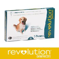 Easy to apply, quick to dry, REVOLUTION® (selamectin) protects dogs against a variety of common internal and external parasites. REVOLUTION is the first FDA-approved, topically applied medication for dogs 6 weeks and older that:  Prevents heartworm disease Kills adult fleas Prevents flea eggs from hatching Prevents and controls flea infestations Treats and controls ear mites Treats and controls sarcoptic mange Controls American dog tick infestations