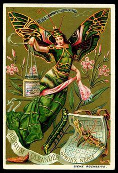 Liebig Butterfly Girl 2, 1890. German edition