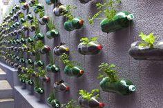 Puedes hacer un jardín vertical con botellas de plástico!!