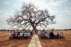 Simply Sophisticated Wedding at Bordeaux Game Farm by Page & Holmes Shed Wedding, Bush Wedding, Wedding Isles, Dream Wedding, Wedding Ideas South Africa, South African Weddings, Nigerian Weddings, Safari Wedding, Lodge Wedding