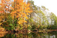 Jesienny spływ rzeką Krutynią  Źródło: www.it.mragowo.pl