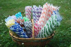 Reusable Straws BPA Free Eco Friendly Striped Blue Orange Green 1 For Mason Jar Cup