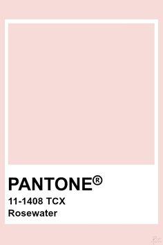 Pantone Rosewater