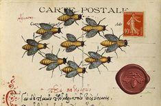 Bee carte postale