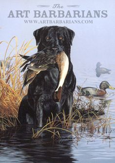Pintail duck and black lab