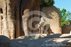 Download Loving Elephant Stock Photo for free or as low as 7.54 руб.. New users enjoy 60% OFF. 22,728,753 high-resolution stock photos and vector illustrations. Image: 34045920
