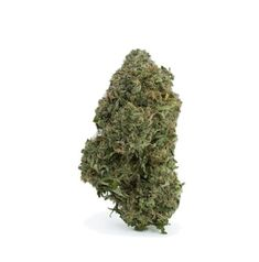 Buy Death Bubba Online in Canada at High Gardens created by crossing death star and bubba kush. Death Bubba weed strain give relief from unknotting tension and physical discomfort with ease. Weed Strains, Death Star, The Smoke, Chronic Pain, Full Body, Earthy, Grass, Canada, Herbs