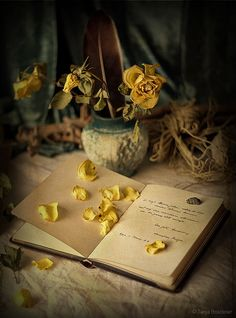 The library is inhabited by spirits that come out of the pages at night.Isabel Allende