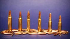 Hunting Guide, Big Game, Rifles, Bullet, Powder, Good Things, Face Powder, Cheat Sheets, Revolvers