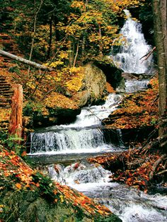 Rickett's Glen, Pennsylvania #pennsylvania #usa #america #bennettinfiniti #allentown #wilkesbarre