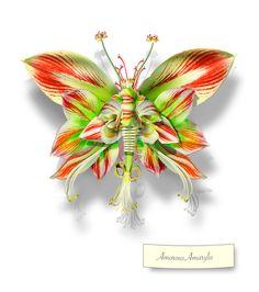 Amorous Amaryllis by Michel Tcherevkoff