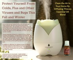 Cold and Flu - With cold and flu season coming quickly, we can protect ourselves naturally without the danger of flu shots. Young Living Thieves essential blend can be very helpful in keeping the cold and flu away. Diffusing it in out homes cleanses the air, and applying it to our feet will give us the protection we need when we are out and about.