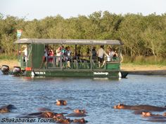 Shakabarge Boat Cruises on St Lucia Estuary!