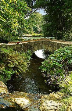 04-WEST SUSSEX-Pheasant crossing bridge at Wakehurst Place Gardens, West Sussex
