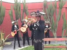 LA PALOMA - MARIACHI NUEVO JALISCO -  SOLO DE TROMPETA DE CESAR RIVERA -... Never On Sunday, Polka Music, Latin Music, Music Videos, Songs, That's Entertainment, Nautical, Sailing, Musicals