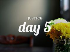 Day 5 of the study of Biblical Justice from the devotional community She Reads Truth | You Yourselves Were Aliens