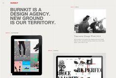 #BURNKIT - Via http://www.themangomedia.com/blog/significance-of-web-design-and-its-tips-to-get-more-website-visitors/ @teammangomedia