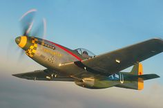 """Gunfighter is restored in the colors of the 343rd Fighter Squadron, 55th Fighter Group, 66th Fighter Wing, 8th Air Force, USAAF, using the nose art """"Gunfighter"""", providing the name by which the aircraft is widely known.  The 55th Fighter Group was the first USAAF combat unit to fly over Berlin and was one of the units to provide top cover over the Invasion Beaches at Normandy on """"D-Day"""", June 6th, 1944."""