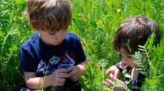 Nurturing through Nature:  Eco-therapy for Children – All One Era