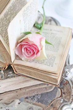 pretty books
