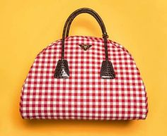 Gingham Purse - the only bag we'd need for spring.