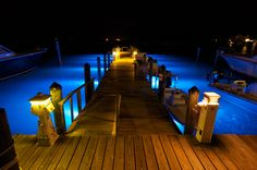Create that dramatic look at the dock with LED lights. Marine Led Lights, Marine Lighting, Dock Lighting, Apex Lighting, Lighting Ideas, Outdoor Lighting, Lake Dock, Boat Dock, Lakefront Property