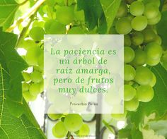 ❤#frases #citas #vivir #quotes #life #inspiration #motivation #followme/ From www.facebook.com/gonmaye