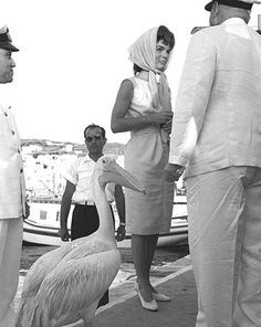 First Lady, Jacqueline Kennedy on Mykonos with Petros the pelican in 1963 Mykonos Island, Mykonos Greece, Athens Greece, Santorini, Old Time Photos, Old Pictures, Jackie Kennedy, Jaqueline Kennedy, American Presidents