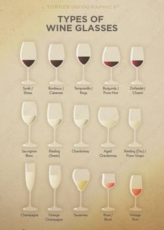 Types of #Wine Glasses                                                                                                                                                     Más                                                                                                                                                                                 Más