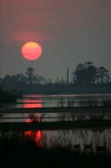 Sunset Chincoteague Island, Virginia