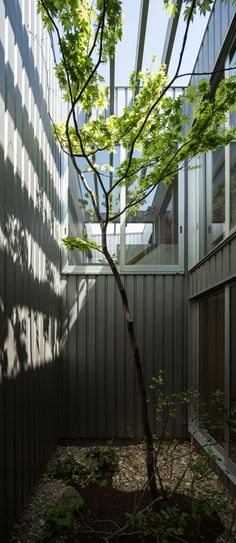 Two light-filled courtyards and a private parking space are concealed behind the metal-clad facade of this small house in Osaka, Japan