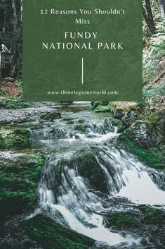 """Funday National Park in New Brunswick, Canada was never on my radar. It isn't on any """"must visit"""" list that I have ever seen. New Brunswick, East Coast Canada, Mother Daughter Trip, Dark Skies, Day Hike, Stargazing, Caribbean, Waterfall"""