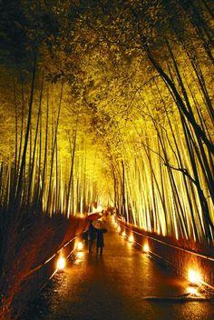 arashiyama,kyoto,japan