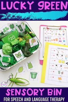 Download these free visual rules to use with your sensory bins. Help your students understand the expectations for using sensory bins. Head to this blog post to see how you can make an engaging St. Patrick's Day sensory bin. Preschool Speech Therapy, Speech Therapy Activities, March Lesson Plans, Green Wrapping Paper, Alphabet Sounds, Lakeshore Learning, Sensory Bins, Speech And Language, How To Better Yourself