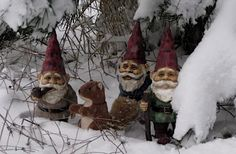 Gnome Stories at Whimsical Woods