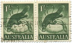 1959 Australian Stamps - Platypus | Flickr - Photo Sharing! Alex Jacque