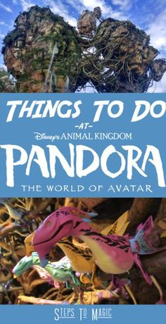 Top 10 Things To Do at Pandora The World of Avatar - Steps To Magic | Orlando Trip Planning